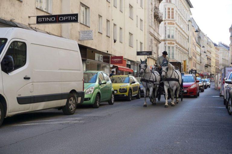 Fiaker und Autos in der Wollzeile in Wien