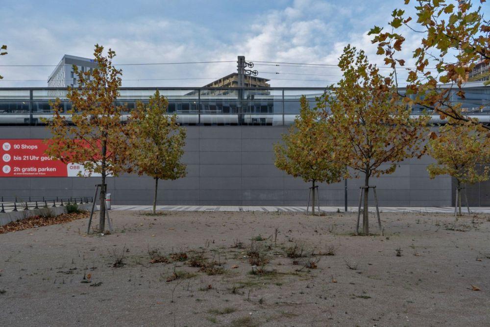 Wiener Hauptbahnhof, Bäume, Bahntrasse