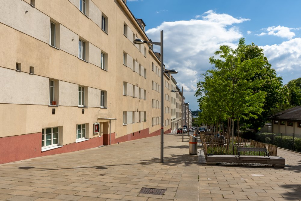 Eduard-Sueß-Gasse, Fußgängerzone