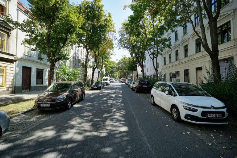 Straße mit Bäumen, Wolfganggasse in Wien-Meidling