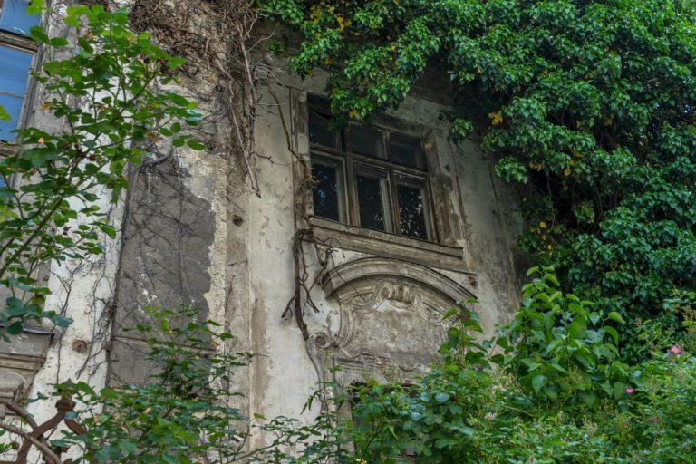 überwuchertes Fenster der Villa Mautner-Jäger, Landstraßer Hauptstraße 140-142