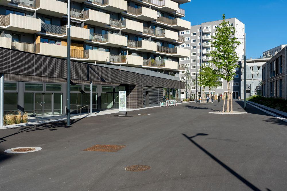 Fußgängerzone in der Seestadt Aspern, Asphalt, Bäume, Neubauten