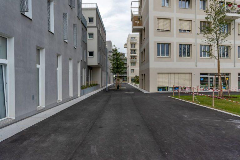 öffentlicher Raum im Seeparkquartier, Seestadt Aspern, Fußgängerzone, Asphalt