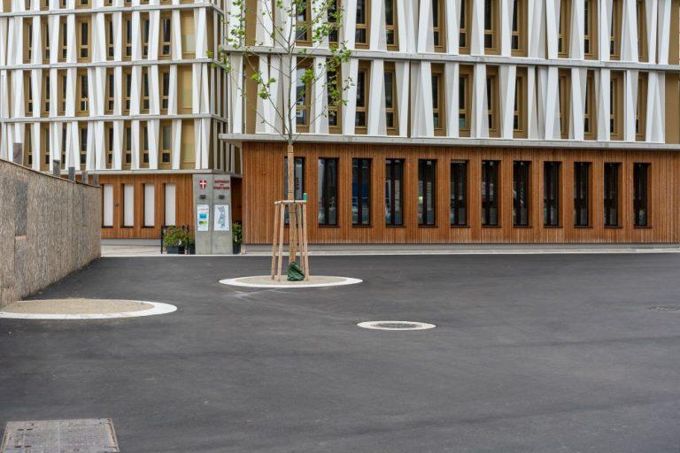 Asphaltfläche im Seeparkquartier in der Seestadt Aspern, Wien, Donaustadt