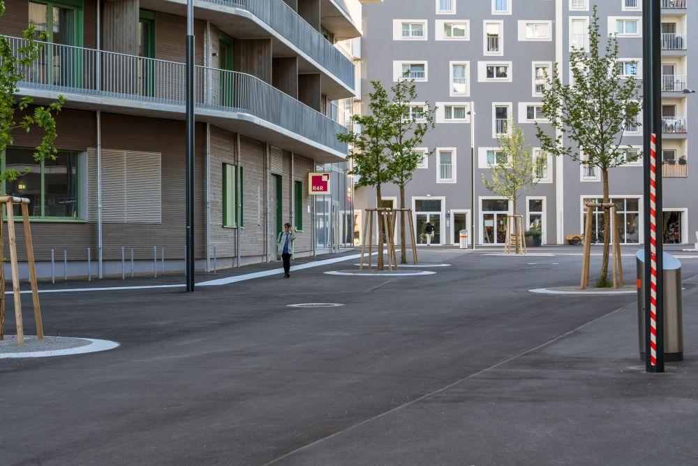 Fußgängerzone in der Seestadt Aspern, Asphalt, Bäume