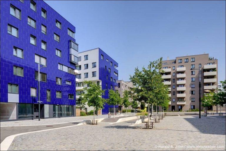 öffentlicher Raum in der Seestadt Aspern, Pflasterung, junge Bäume, Bänke, Neubauten, Donaustadt. Wien