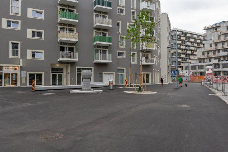 öffentlicher Raum im Seeparkquartier, Seestadt Aspern, Fußgängerzone, Asphalt, Brunnen, junge Bäume, Baustelle
