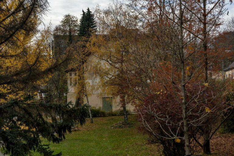 Grünfläche an der Ecke Breitenfurter Straße, Mackgasse, Gräfin-Zichy-Straße, Kalksburg, Liesing, Wien