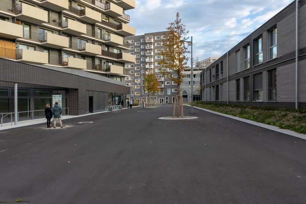 Seestadt Aspern, Fußgängerzone, Seeparkquartier, Asphalt, Bäume, 1220 Wien