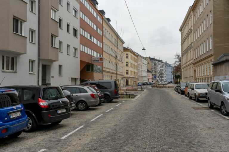 Goldschlagstraße in Wien-Penzing, Autos, Häuser, Pflasterung, junge Bäume