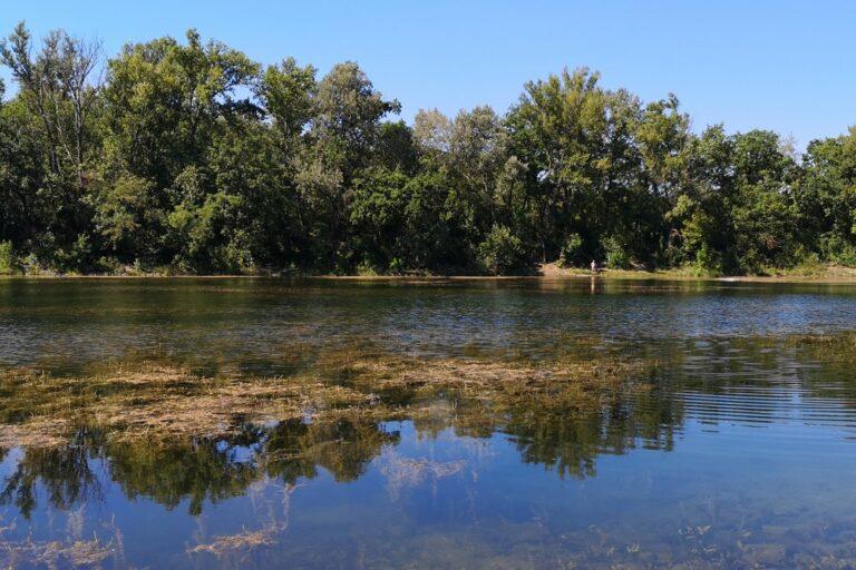 Naturschutzgebiet Donau-Oder-Kanal in der Lobau (Foto: 2020, Meru7, CC BY-SA 4.0)