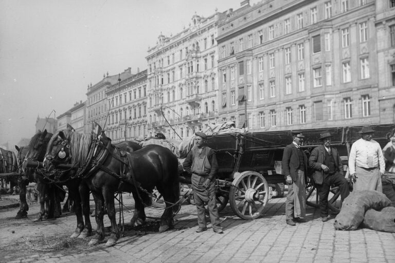 Fuhrwerk, Naschmarkt, 1910, Wienzeile