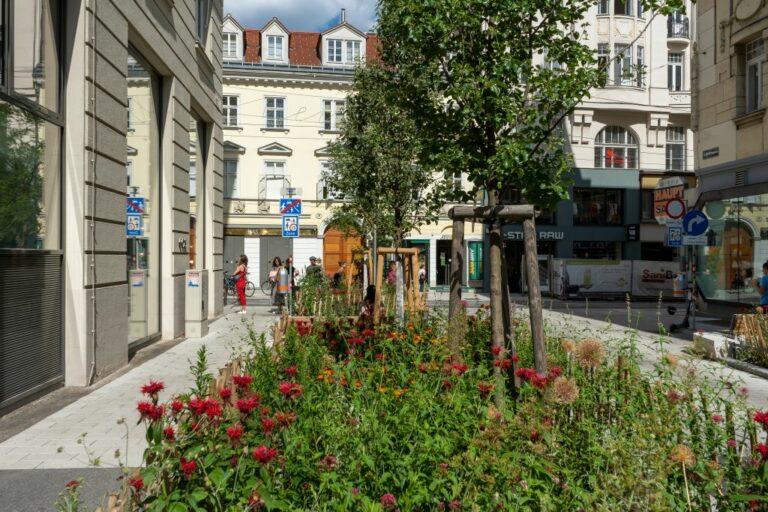 begrünte Straße in Wien, Richtergasse/Neubaugasse