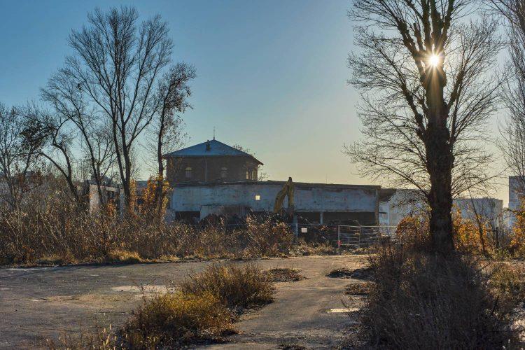Nordbahnhalle in Wien-Leopoldstadt (2. Bezirk) bei Abriss, Bagger, Sonne, Bäume