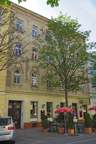 Gründerzeithaus Schiffmühlenstraße 80 in Kaisermühlen, Wien-Donaustadt